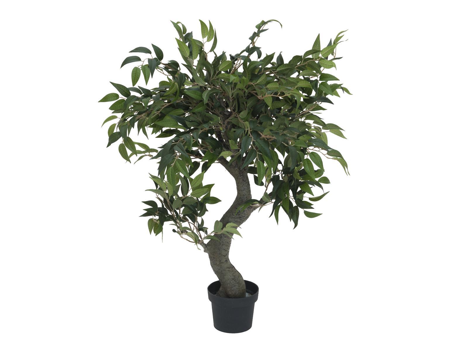 EUROPALMS Ficus Waldbaum, Kunstpflanze, 80cm