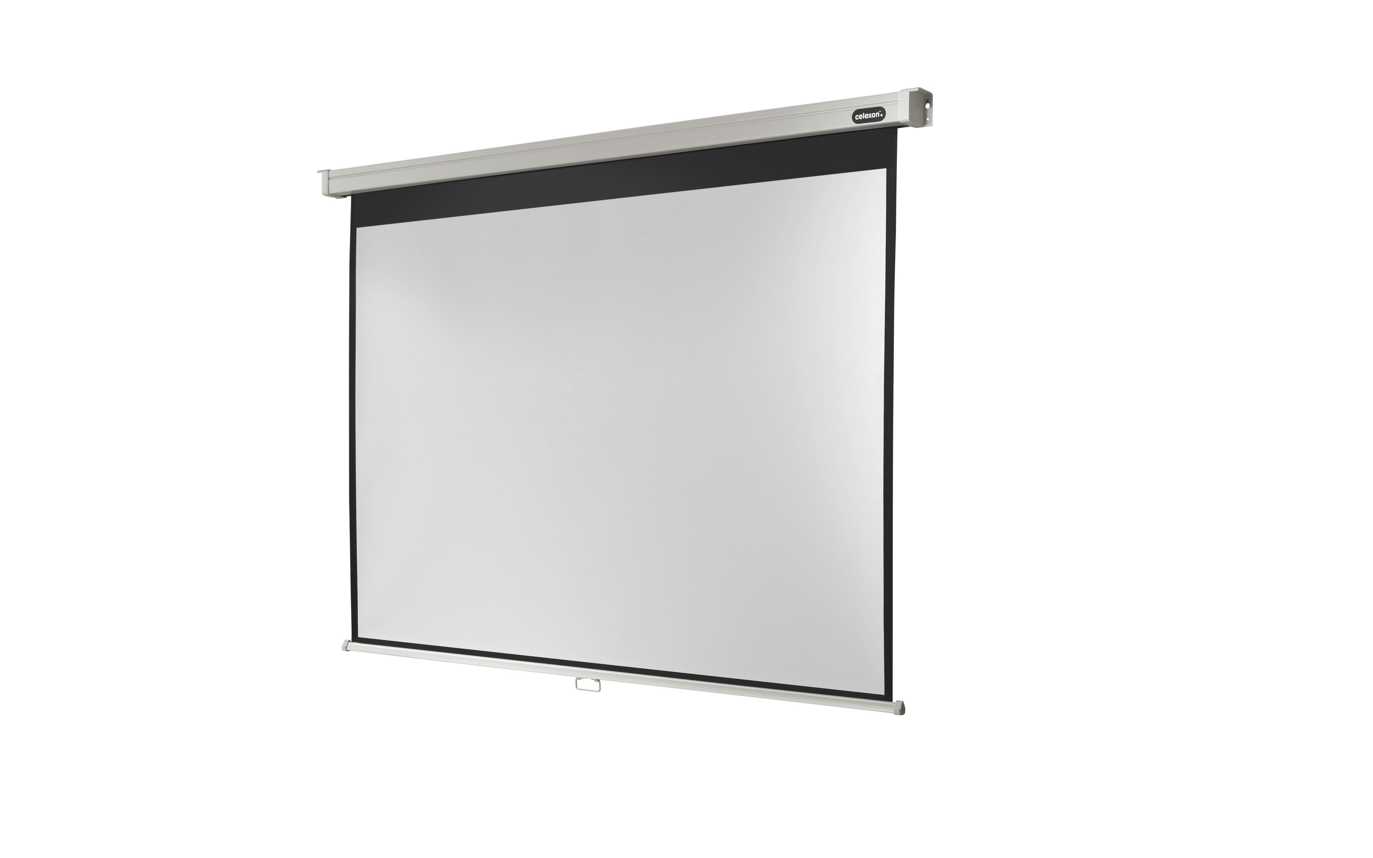 celexon Leinwand Rollo Professional 220 x 165 cm