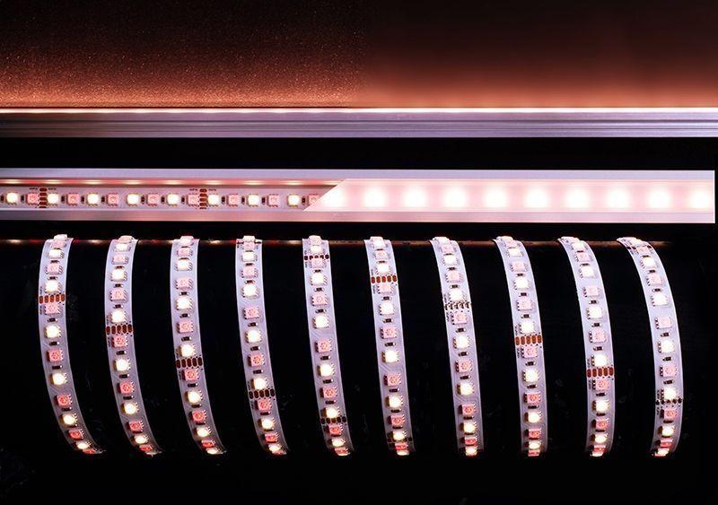 5050-96-24V-RGB+4200K-5m