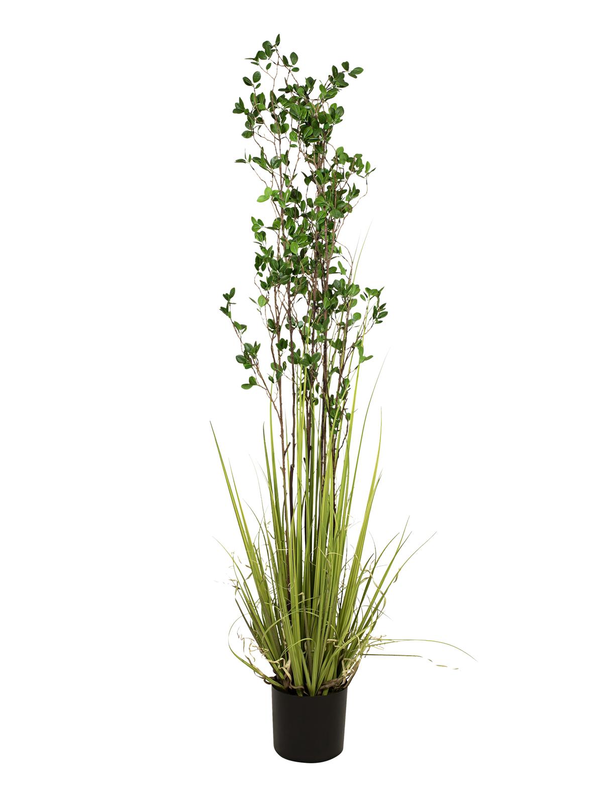 EUROPALMS Immergrünstrauch mit Gras, Kunstpflanze, 182 cm