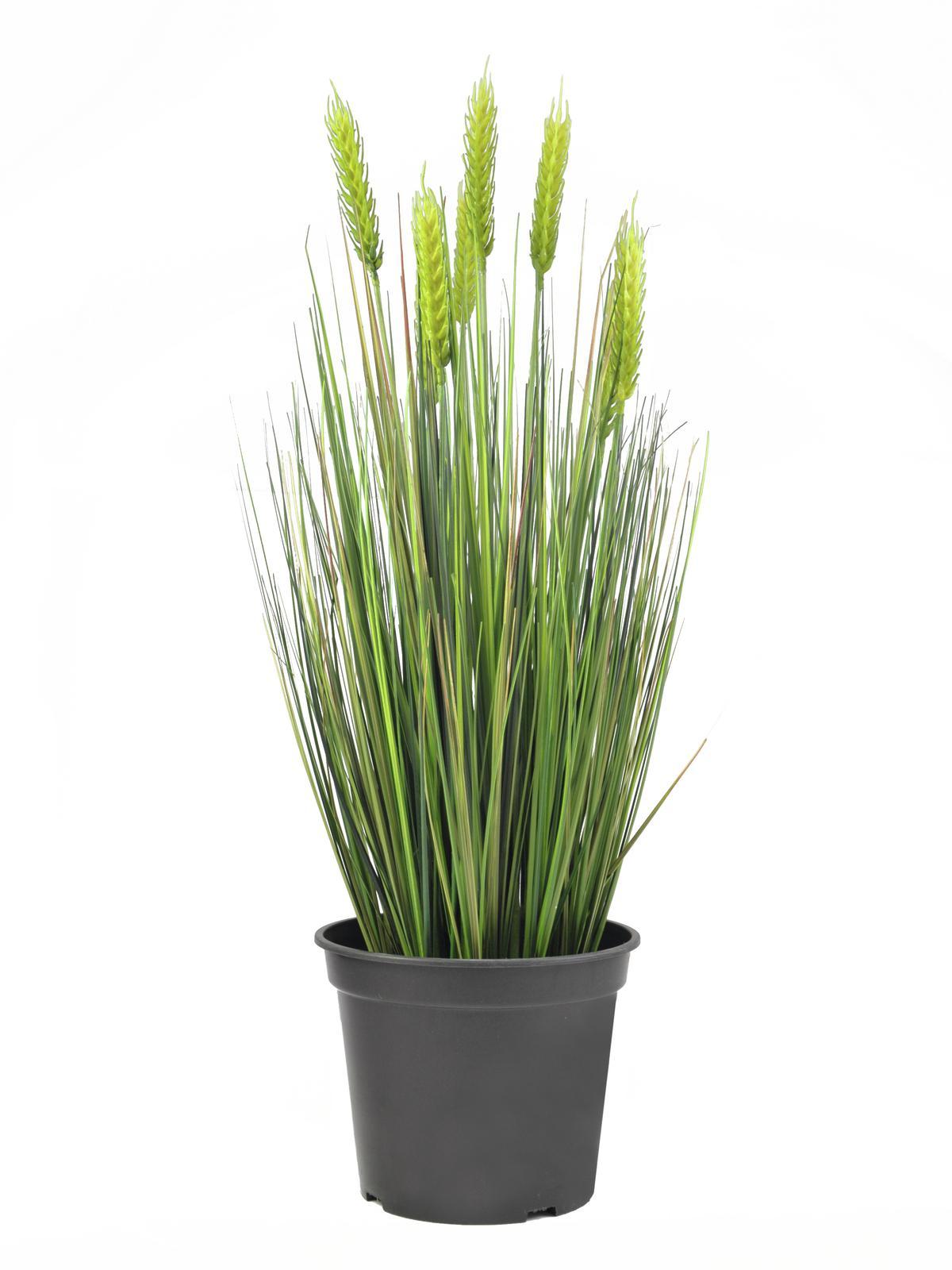 EUROPALMS Weizen Frühsommer, künstlich, 60cm
