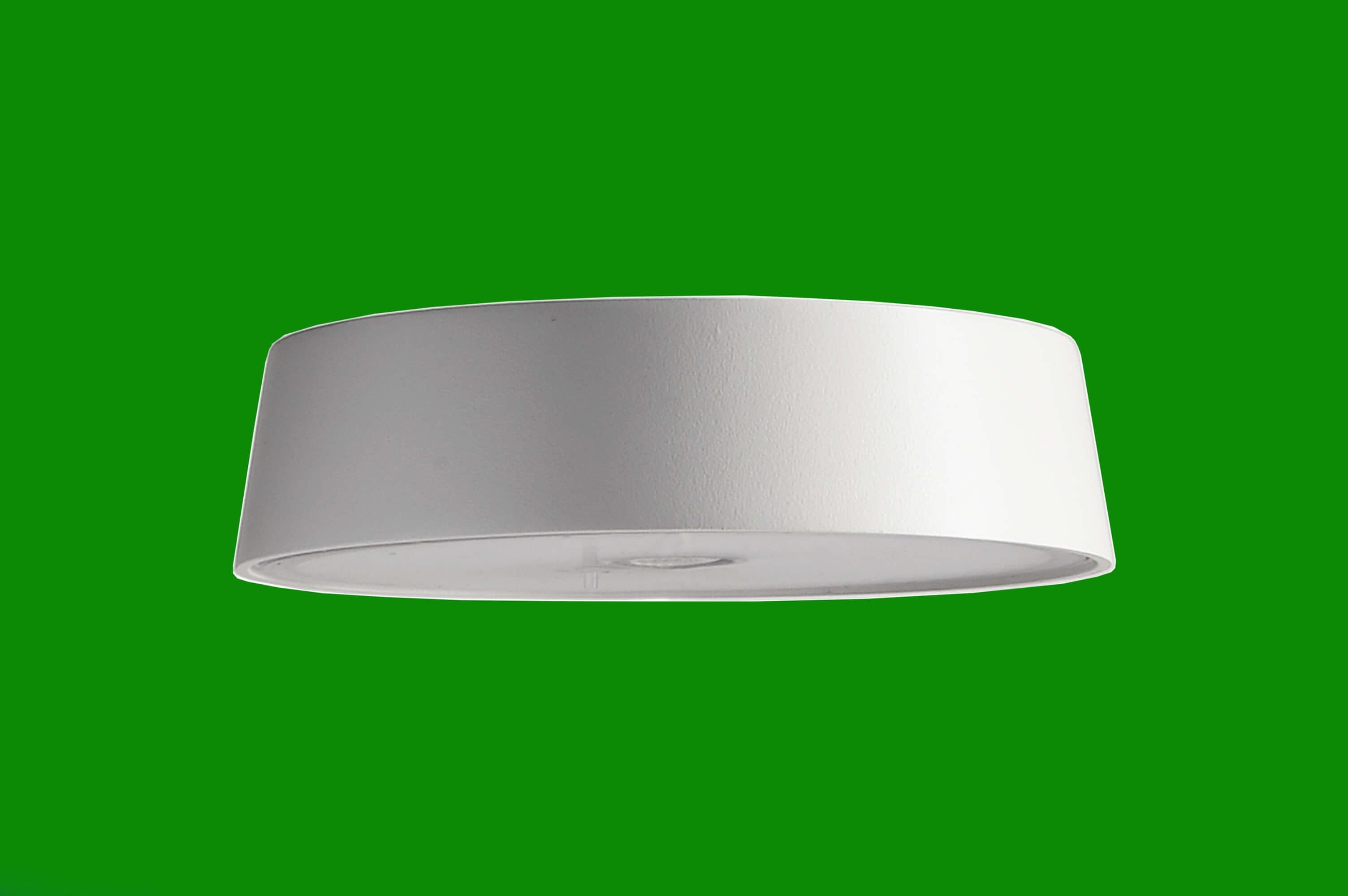 Kopf Magnetleuchte Miram Grün