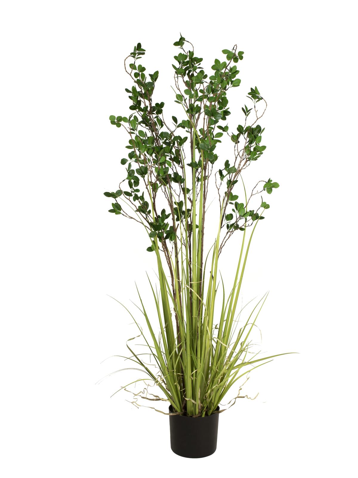 EUROPALMS Immergrünstrauch mit Gras, Kunstpflanze, 152 cm