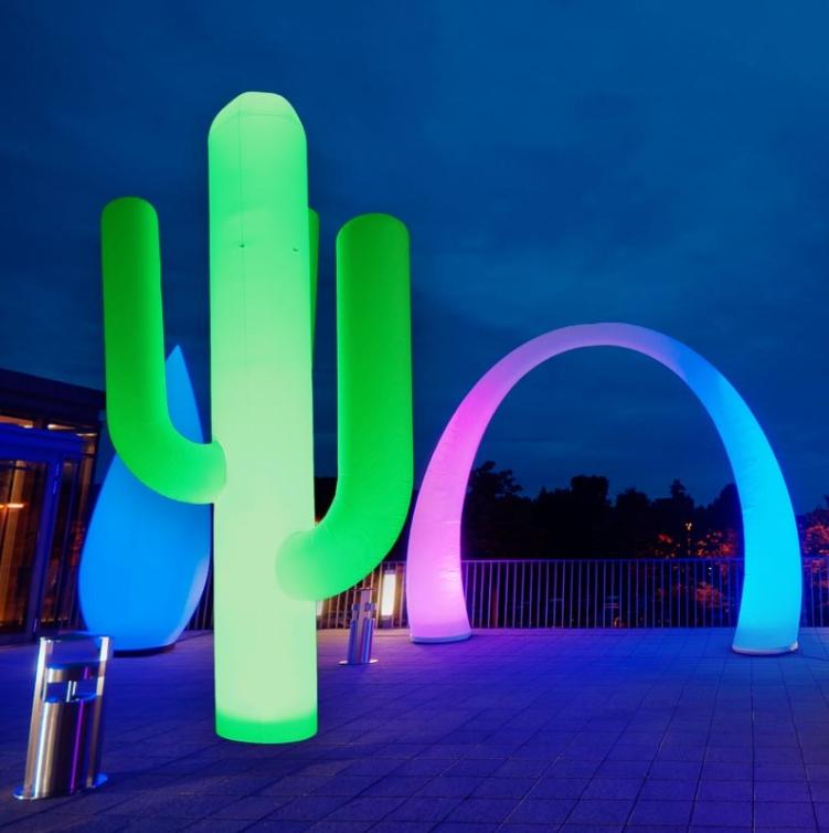 Hülle Cactus weiß