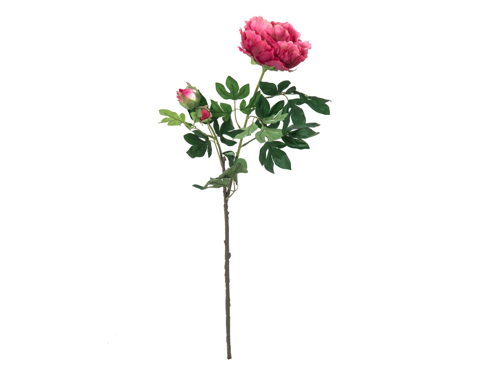 EUROPALMS Pfingstrosenzweig Premium, Kunstpflanze, magenta, 100cm